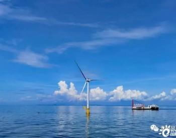 打桩船+吊装船超20艘!这一风电项目全面进入海上安装高峰期