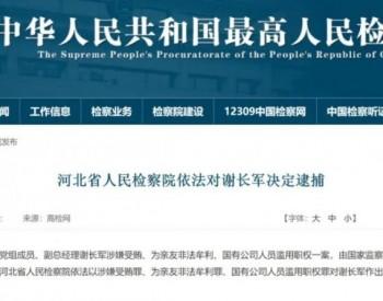 原中国国电集团公司党组成员、副总经理谢长军被逮捕