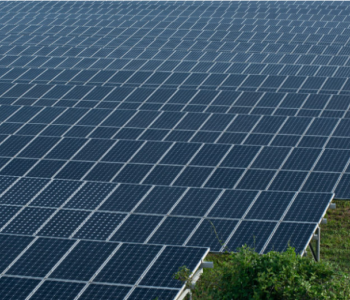 储能12MW/12MWh!清能院、<em>库博能源</em>、阳光电源中标华能丰城湖塘乡120MW渔光互补项目储能系统设备采购
