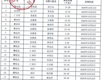 2020年10月四川省纳入国补规模户用光伏项目名单统计数据表