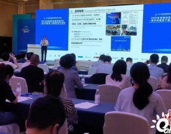 李立浧院士:碳中和愿景下,中国如何进行能源转型?
