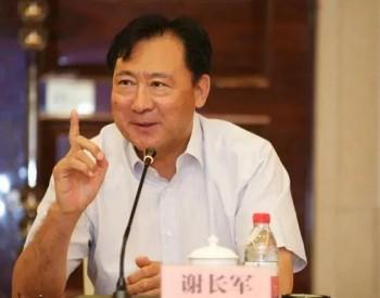 """原国电集团副总经理、昔日""""风电旗手""""谢长军被"""