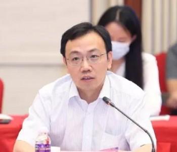 """国家能源局新能源司副司长王大鹏:在农村实施""""千"""