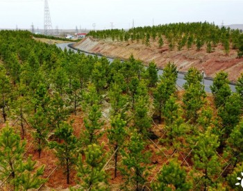 达拉特旗:加强黄河流域生态治理 年入黄泥沙减少9