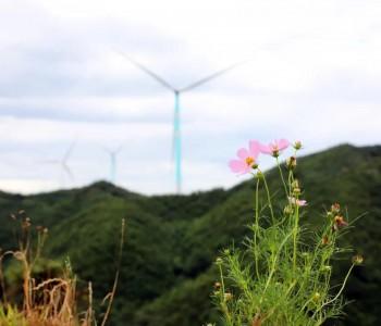 国际能源网-风电每日报丨3分钟·纵览风电事!(9