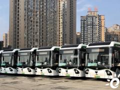 """""""城市之舟""""氢装运行!120台黑科技熊猫造型公交车上线郫都"""
