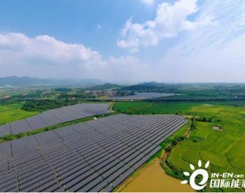 安徽青阳:借力光伏产业 探索绿色发展