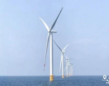 向海图强,山东现代海洋产业加速崛起