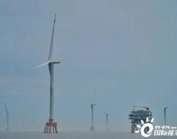 浙江省新能源装机占比首超20%