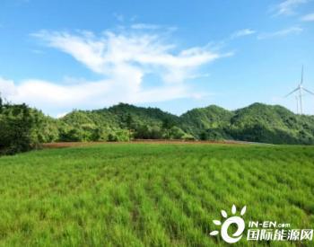 """河北武华山风电场""""花园式喷种""""还青山一片绿色"""