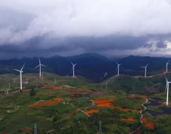 4GW风电入围河南名单,大唐、国电投、明阳、华润、特变规模最大!