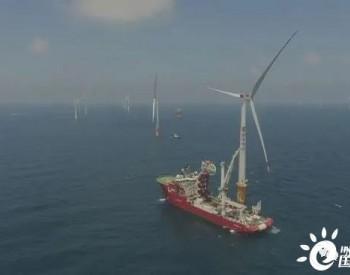 广东揭阳神泉一海上风电项目(标段Ⅰ)完成全部风机吊装