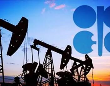 <em>欧佩克</em>警告天然气危机可能造成石油市场动荡