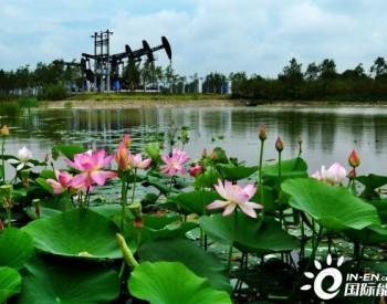 """OGCI发布最新战略 中国石油加速推进""""双碳""""目标"""