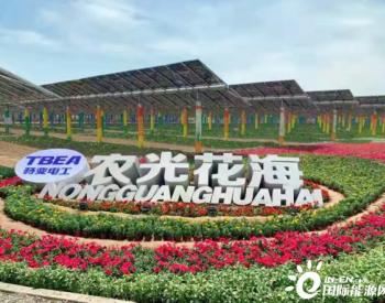 光伏+科技农业,助力乡村振兴.