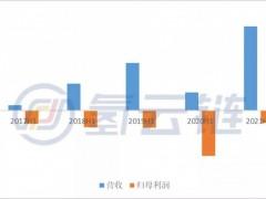 解密亿华通财报,看全球燃料电池产业市场赛道分化
