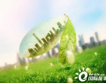 刘世锦:减碳不是减少生产能力,更不是人为打乱供