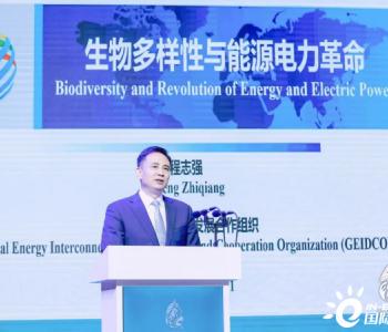 全球能源互联网发展合作组织:助力提供减缓生