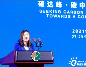 <em>三峡新能源</em>副总经理刘姿:携手推进光伏治沙技术进步 打造沙漠能源生态圈