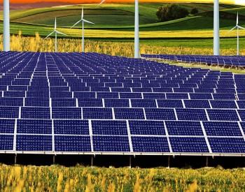 最高2.35元/W!山东能源集团1.1GW组件开标