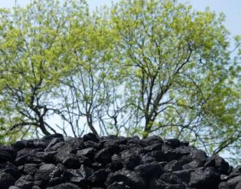 清洁取暖为何散煤复燃多?