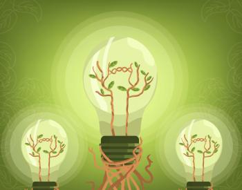 """让""""双碳""""目标成为经济转型助推器"""