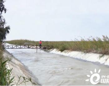 新疆阿瓦提县:生态输水 切实改善县域生态环境