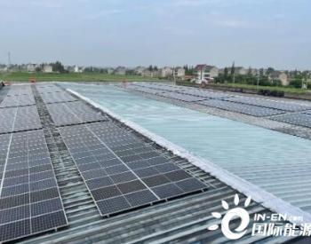 屋顶光伏发电 浙江平湖新埭美丽城镇实现年减碳量