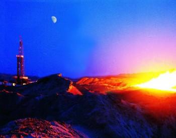 林伯强:新能源不应为全球能源短缺负责