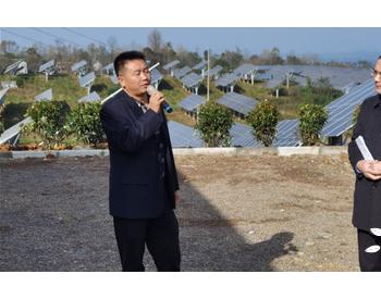陕西洛南:100兆瓦光伏农业与观光旅游 巩固拓展脱
