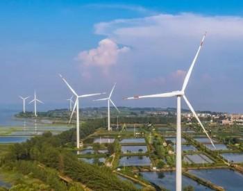 电力大变局:能源危机与绿电、储能革命