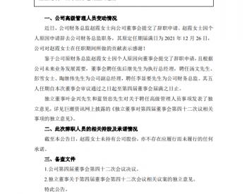 恒泰艾普: 2021 -150关于高级管理人员变更的公告
