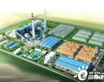 应对能源危机,大力发展生物质发电