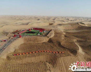 """甘肃1285万千瓦新能源项目开工:""""光伏+治沙""""改善生态"""