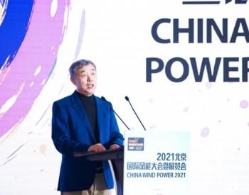 中国能源研究会常务理事李俊峰:每年一亿千瓦风光增长目标并不够,我们需要做得更多