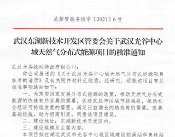 湖北省武汉光谷中心城天然气分布式能源项目获核准批复