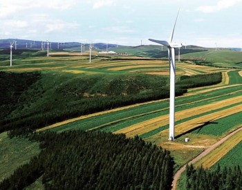 """东北电力大学张立栋:""""以大代小""""改造老旧风机的经济账"""