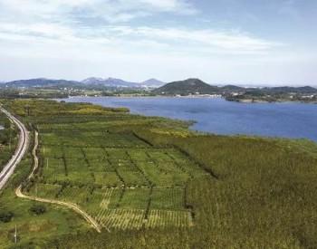 """全力推进碳达峰!湖南省发布""""十四五""""生态环境保"""