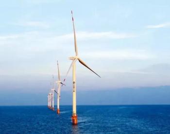 优先推动风能、太阳能就地就近开发利用!中共中央、国务院要求积极发展非化石能源!