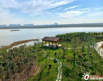 """天津建立绿色生态屏障 城市""""绿楔""""助力""""碳中和"""