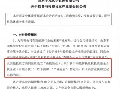 丰元股份1000万投资新能源产业基金