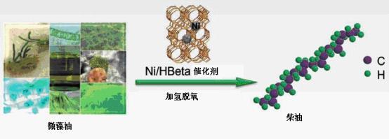 新的催化过程从微藻油生产<em>可再生柴油</em>